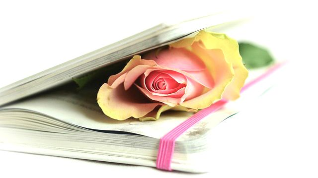 Rose in Gedichtebuch